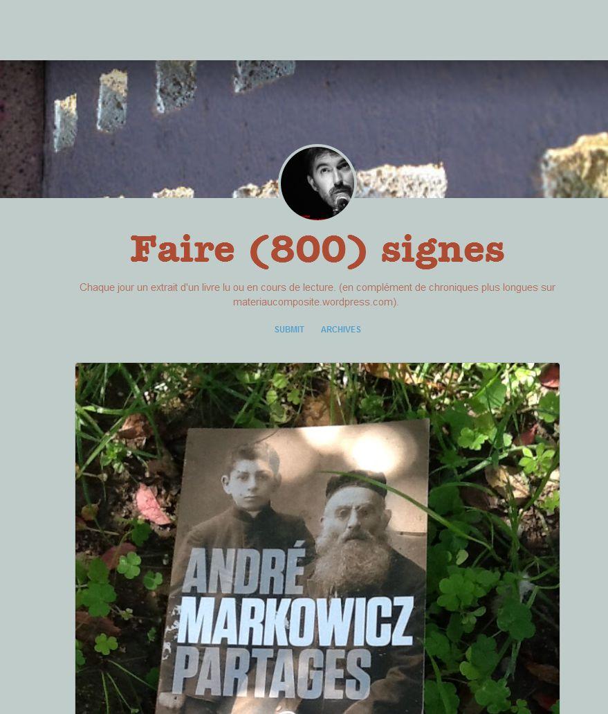 FireShot Screen Capture #180 - 'Faire (800) signes' - guenaelboutouillet_tumblr_com