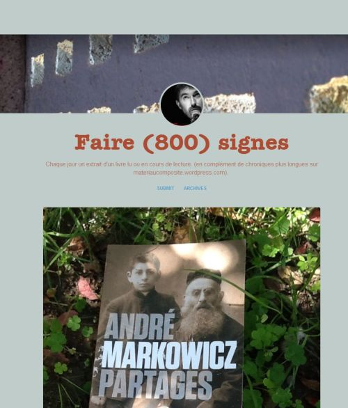 FireShot Screen Capture #180 - 'Faire (800) signes' - guenaelboutouillet_tumblr_com