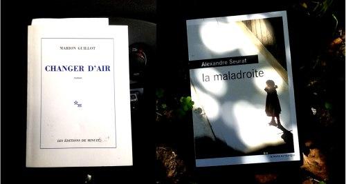 les-deux-livres